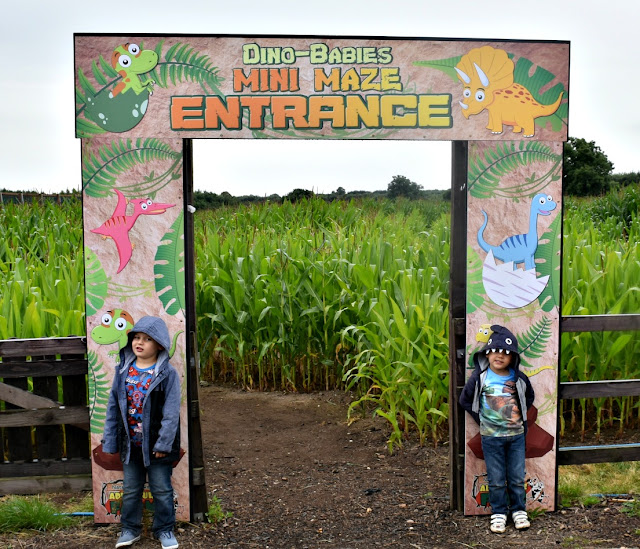 Mini Maze at National Forest Adventure Farm