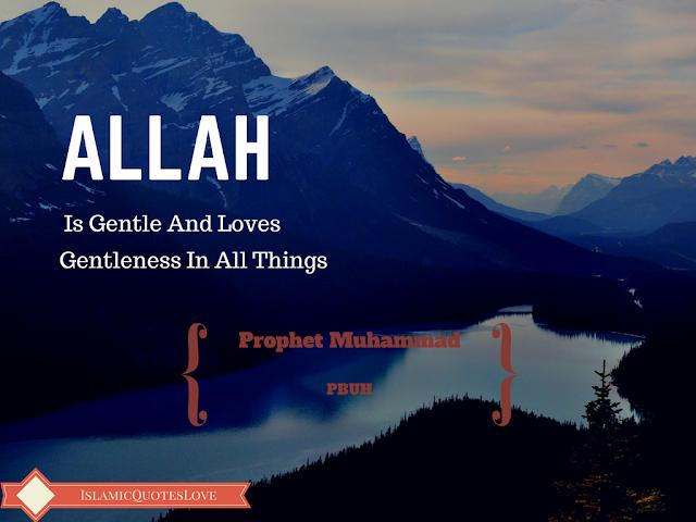 ALLAH IS GENTLE AND LOVES GENTLENESS  IN ALL THINGS. Prophet Muhammad (P.B.U.H)