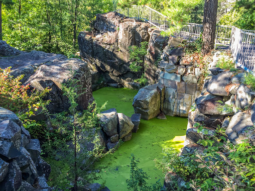 Lilly Pond on the Glacial Potholes Trail at Interstate State Park