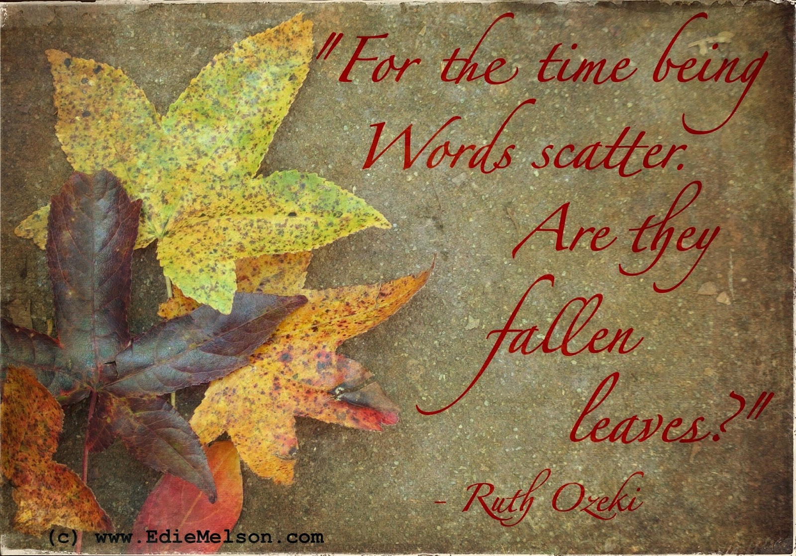 falling leaves quotes like - photo #2
