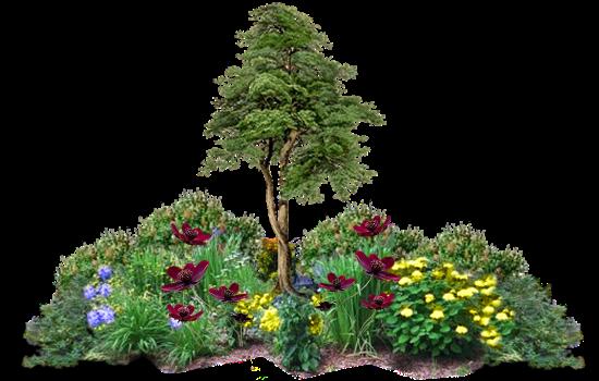 Cosas Para Photoscape Flores Y Plantas Arboles Ps: Díszítők: Fa