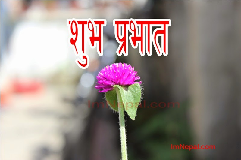 Nepali SMS, Messages, Shayari, Quotes