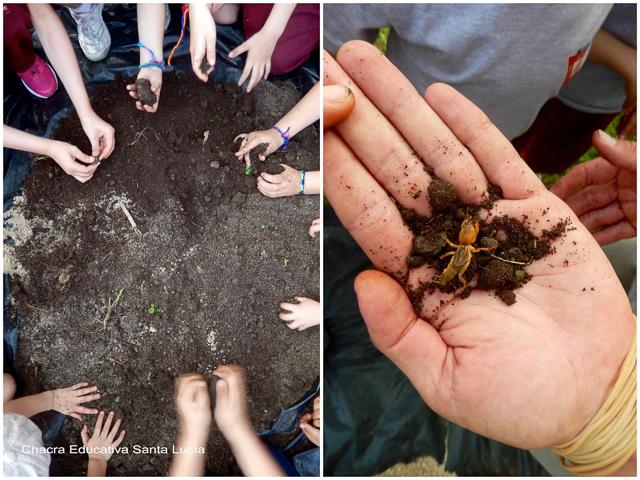 Trabajando el tema suelo - Chacra Educativa Santa Lucía