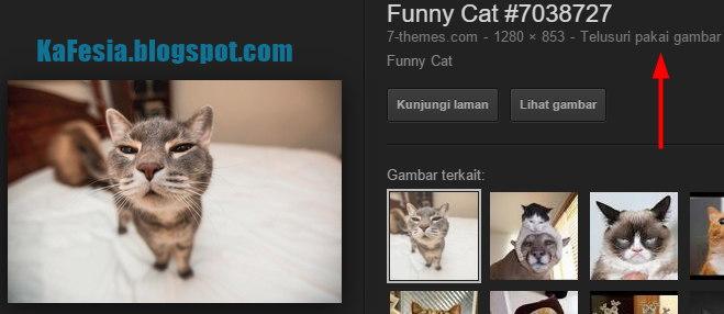 Cara Mencari Foto/Gambar Yang Sama di Google Tanpa Harus ...