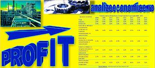 Cât profit au făcut companiile din România din 2008 încoace