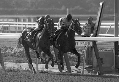 Affirmed, Belmont Stakes, USA,
