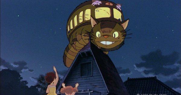 かわいい虫?ネコバスに似ている虫、トトロカギムシ【n】