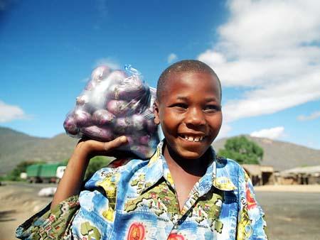 Selling Onions in Ghana