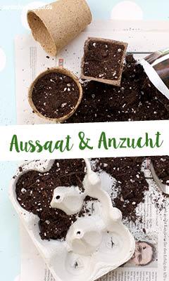http://aentschie.blogspot.de/2015/03/es-ist-pflanzzeit.html
