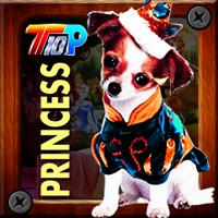 Top10NewGames Thanksgiving Rescue The Princess Pet