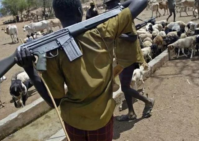 Suspected herdsmen attack Ekiti community, kill 2 persons
