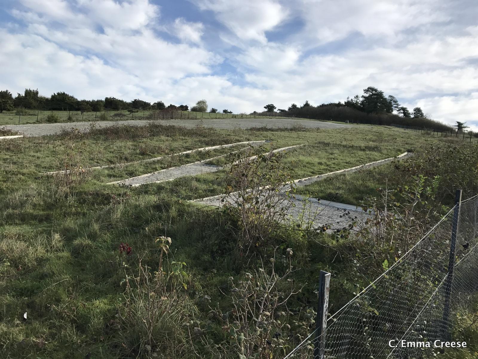 Bulford Kiwi Salisbury Wiltshire Adventures of a London Kiwi