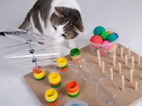 The Best Toys For Your Cat