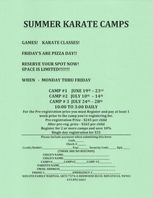 NFMA Summer Camps 2017 Flyer
