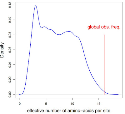 The effective number of amino-acids per site