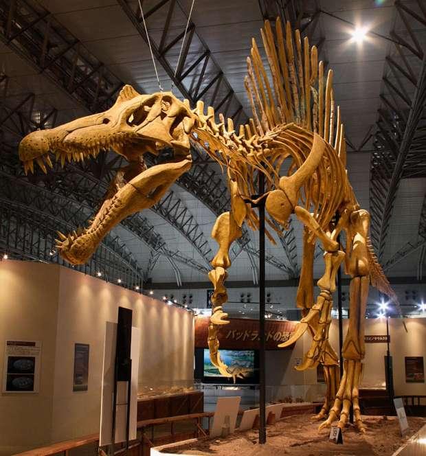 معلومات عن سبينوصور Spinosaurus