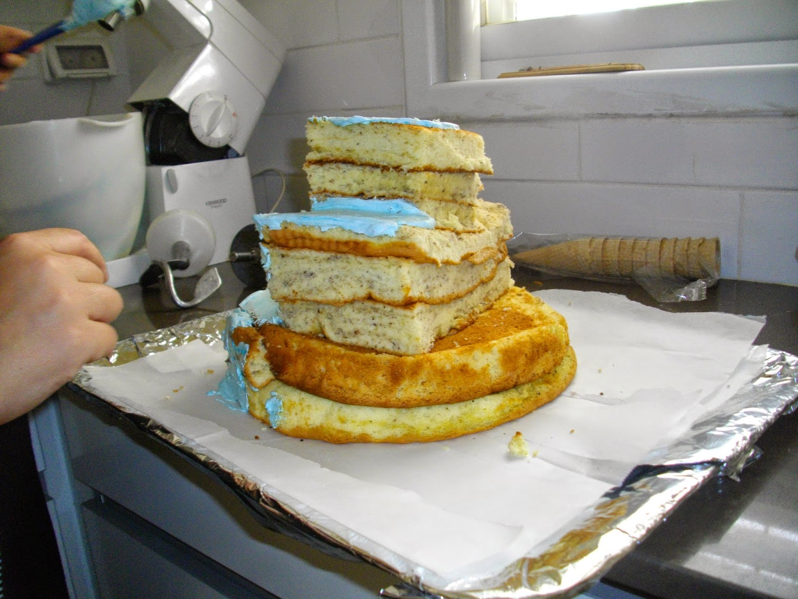IMGP2859 - עוגת יומולדת בצורת ארמון