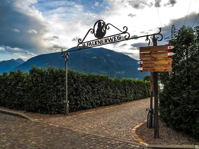 Falkner Weg Trail