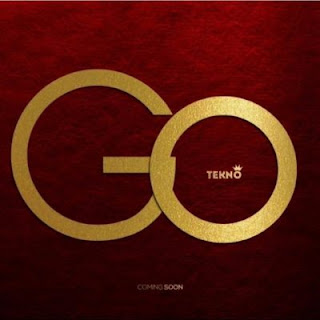 Tekno shared snippet of the song Go