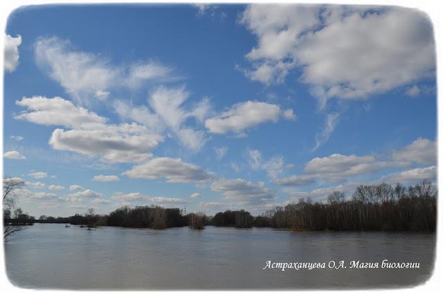 река, облака, весна