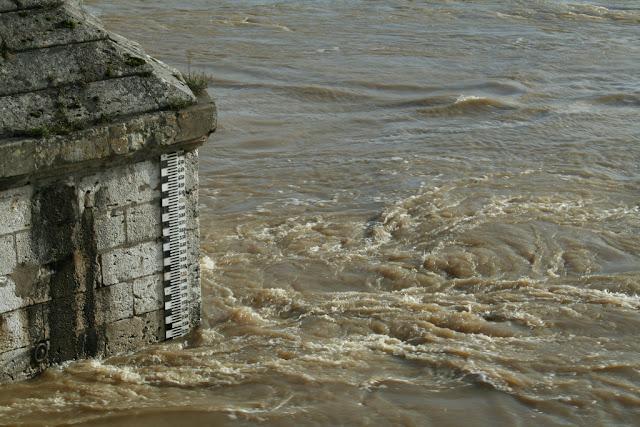 Cote de la Loire (novembre 2008)