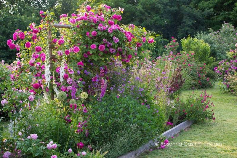 http://www.elblogdelatabla.com/2016/07/jardin-de-rosas-en-piamonte.html
