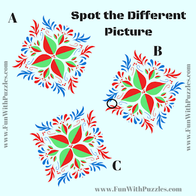 Answer of Odd One Out Picture Puzzle for Adults