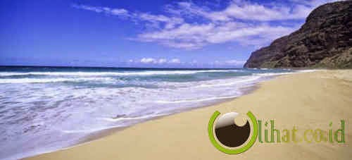 Pantai dengan pasir menggonggong Kauai, Hawaii