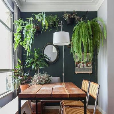 urban-jungle-endency