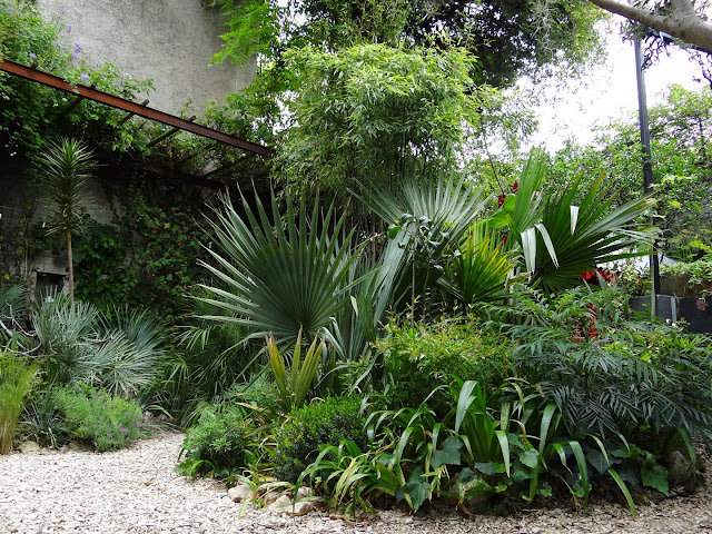 (07) Le jardin de Bésignoles - Privas - Page 2 DSC08157