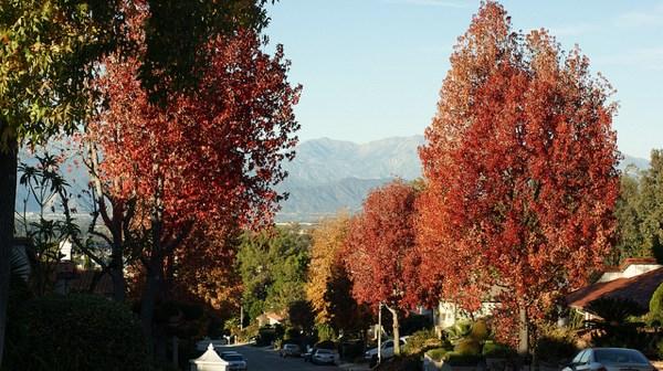 Condições climáticas no mês de outubro em Los Angeles