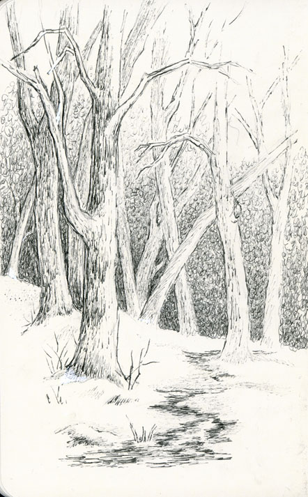 sbwatercolors and sketching: Winter Scene - Pen and Ink ...