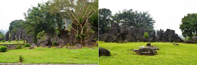 Batu-batu tumbuh kontras di atas hijau rerumputan di Taman Prasejarah Leang Leang | © JelajahSuwanto