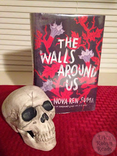 the walls around us book photo