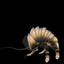 Guía de criaturas de la Galaxia Sporeana ~ Parte 1 ~ (Spore Galaxies: The Fallen) Cucaracha%2Brinoceronte
