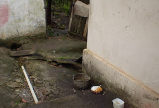 Saneamento Região metropolitana e competência para saneamento básico - ADI 1842.