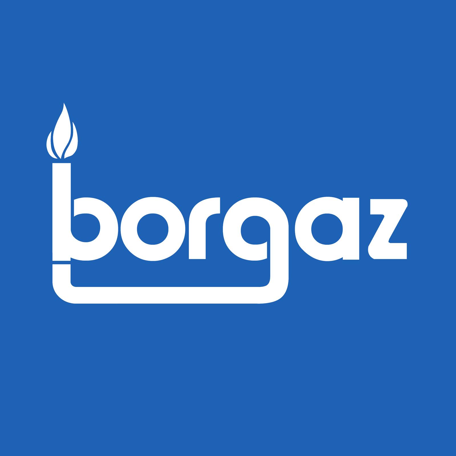 Logo dla firmy BorgazSerwis. Grafika, logo, logotyp, identyfikacja wizualna