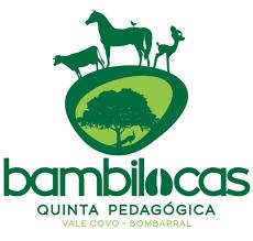 http://bambilocas.pt/