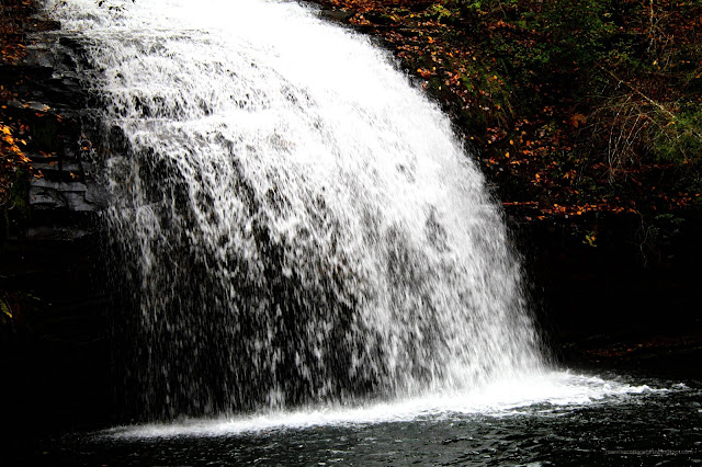 Waterfalls, Hiking, Nature, Fall Leaves