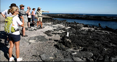 Tourists on Galapagos Islands Rocky Beach Taking Picutres