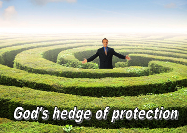Listening to God Forum: Post # 52 - ERECTING A HEDGE of