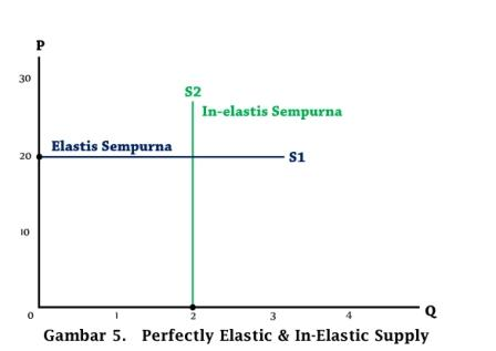 Perfectly Elastic and Inelastic Supply - www.ajarekonomi.com