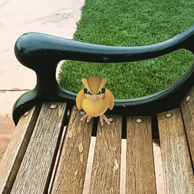 Renuncia a su trabajo para cazar Pokemon de tiempo completo
