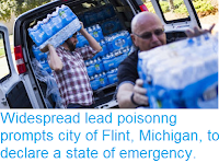 http://sciencythoughts.blogspot.co.uk/2015/12/widespread-lead-poisonng-prompts-city.html