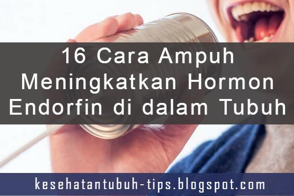 Cara Ampuh Meningkatkan Hormon Endorfin di dalam Tubuh