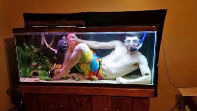 Lustiger Mann beim tauchen im Aquarium zum lachen