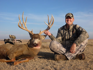 pope and young mule deer buck