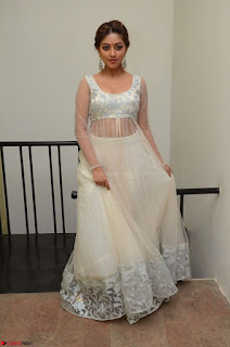 Anu Emmanuel in a Transparent White Choli Cream Ghagra Stunning Pics 033.JPG