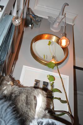faux fur;crystal door knobs; velvet upholstered chair; pendant lighting;JoFer