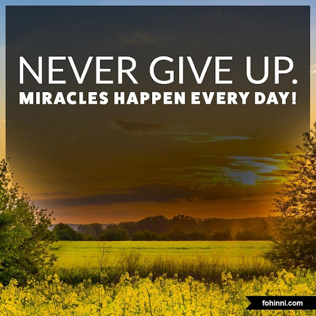 Never Give Up, Miracles Happen Every Day